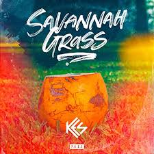 Image result for savannah grass kes album cover